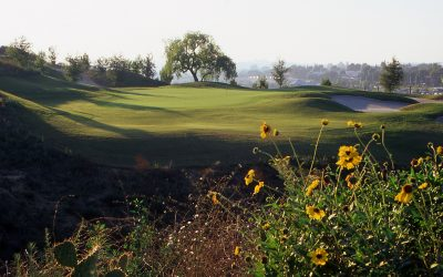 Coyote Hills – Where Oil Pumps and Golf, Do Mix